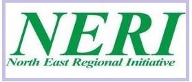 NERI Nigeria Current Recruitment: Gender and Capacity Building Specialist