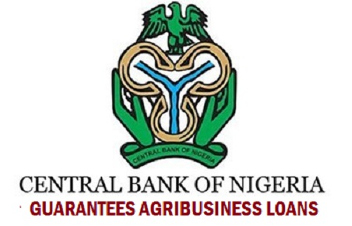 How You May Win CBN Agribusiness Loan 2019