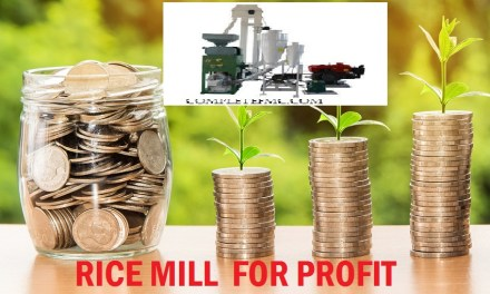10-Ton Rice Milling Plant for Profit with Sample Business Plan
