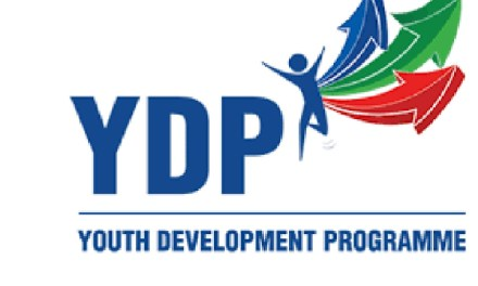 How to Enlist on Nigerian Youth Digital Skills Program -DEEL
