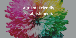 image of a rainbow coloured flower with text in white that reads Autism-Friendly Establishments
