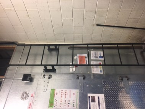 Custom Interior Ladder