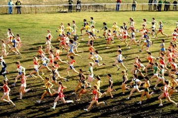 xcountry_race