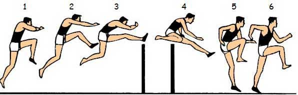 CTF-hurdle-step1-6