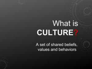 What is culture? A set of shared beliefs, values and behaviors