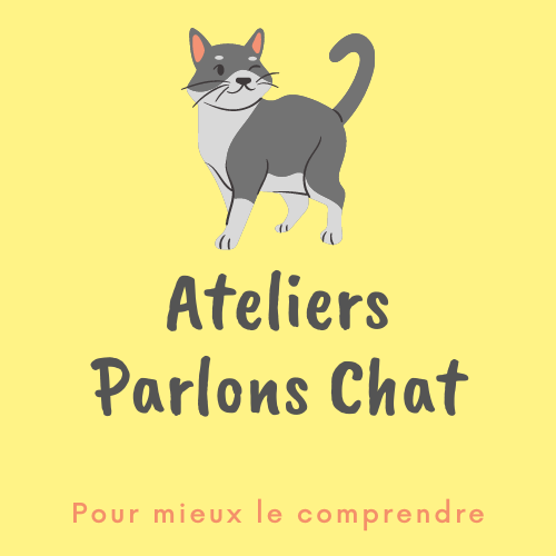 Ateliers Parlons Chat