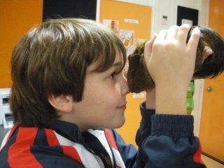 Interações mediadas por animais podem melhorar o comportamento social de crianças com autismo. 5