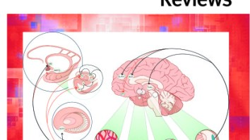 Conheça o periódico: Neuroscience & Biobehavioral Reviews 22
