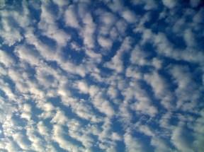 Fish scale clouds