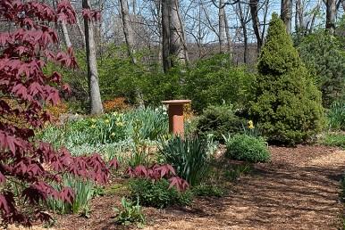 Herb Garden in April
