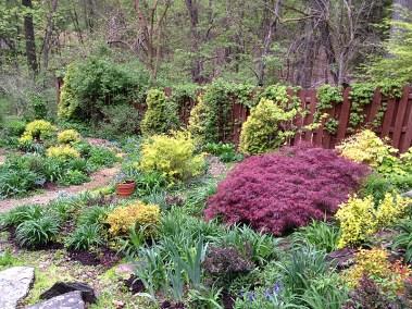 Garden in mid-May