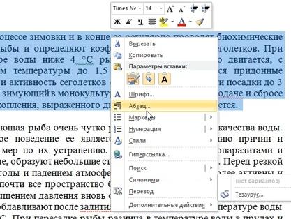 abzac_v_vorde2.jpg