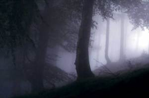 roncesvalles-9