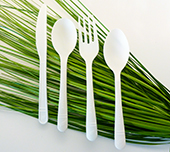 Earth To Go White CPLA Cutlery