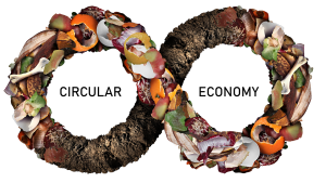 Circular Economy Models & Composting