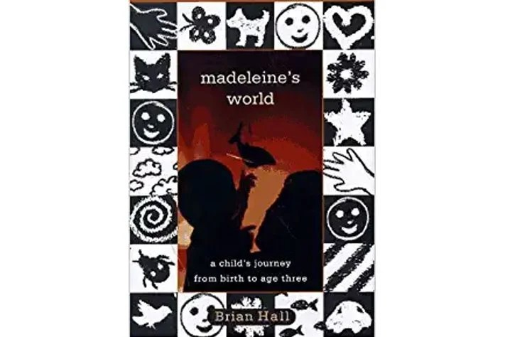 Madeleine's World book cover.