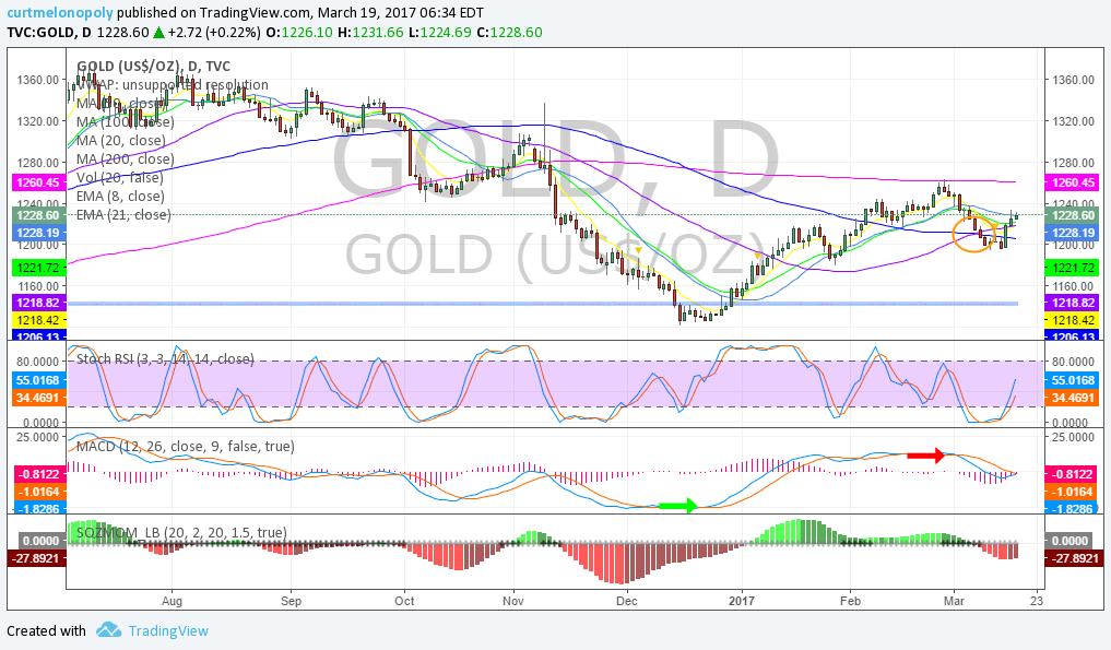 Gold, Daily, Chart, Swing Trading