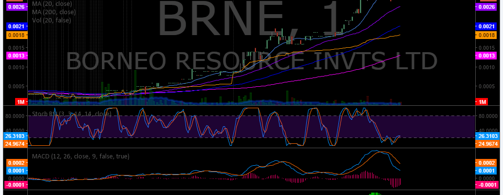 $BRNE, Post, Market, Trading, Results