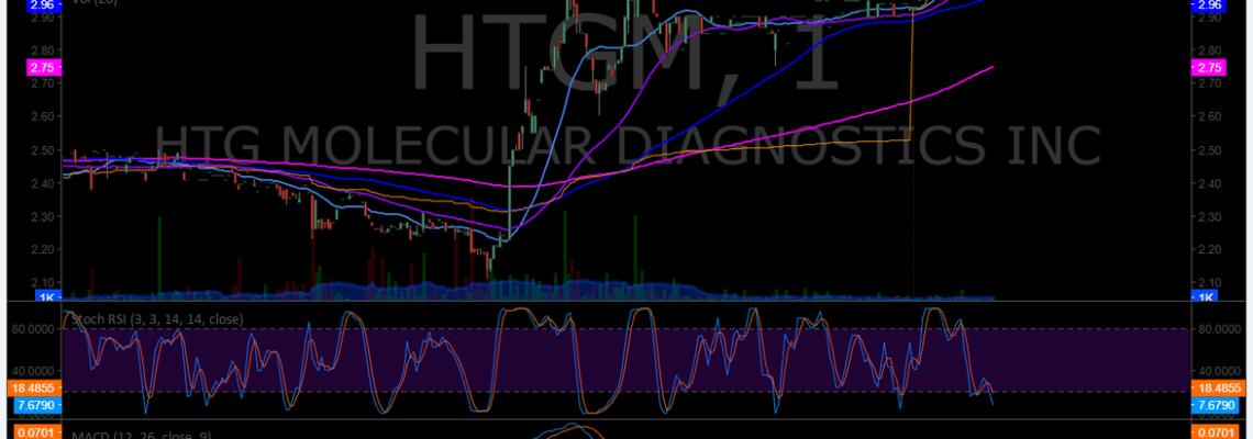 $HTGM, premarket, trading, plan, watchlist