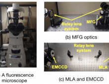 Snapshot multifocal light field microscopy
