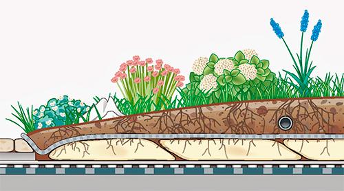 Terrazas verdes Cubiertas verdes