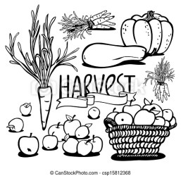 fruits vegetables harvest clip clipart drawing vector drawings line eps8 icon