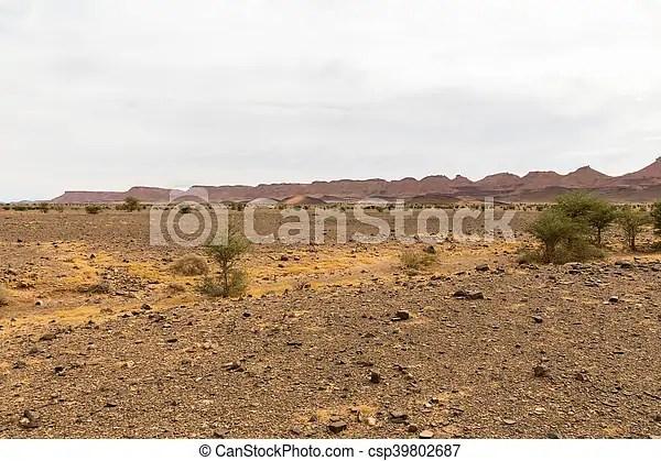 desert landscape morocco