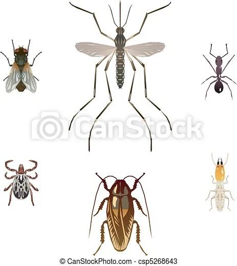 說明, 昆蟲, 六, 有害物. 白蟻, 蟑螂, 家蠅, 螞蟻, 蚊子, 壁虱.