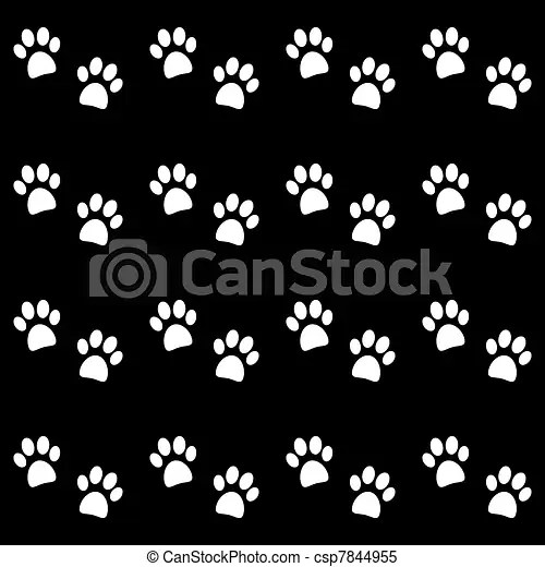 Animal Print Wallpaper Border Background With White Paw Prints Vector