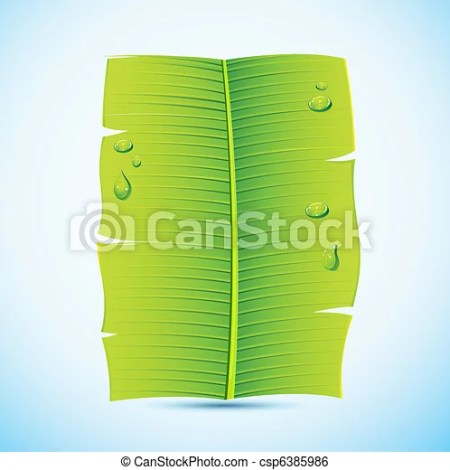Banana Leaf Invitation Letter Csp6385986