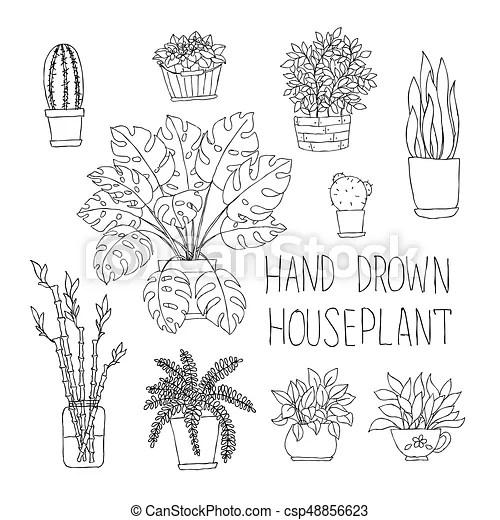 Big set of hand drawn houseplants monstera, bamboo, cactus