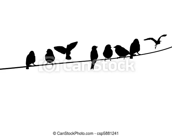 Birds on a telephone wire. A silhouette of birds on a wire