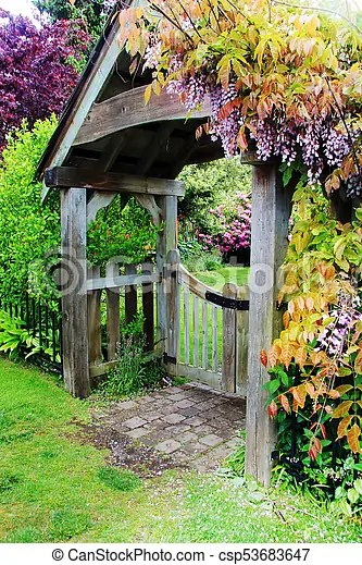 Blooming Wisteria On The Garden Gate Picket Fence And Garden Gate Covered In Blooming Wisteria