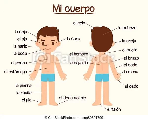 Body Parts In Spanish Mi Cuerpo My Body Diagram Of Human Body Parts In Spanish For Language Learning Cute Cartoon Boy