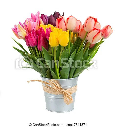 bunch of tulips flowers