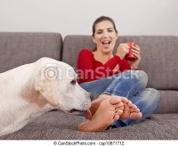 Stock Photography of Dog licking the toes - Woman drinking ...