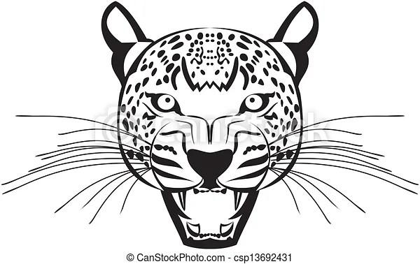 Vectors of Leopard face vactor graphics csp13692431