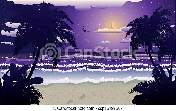 vector clipart of night beach