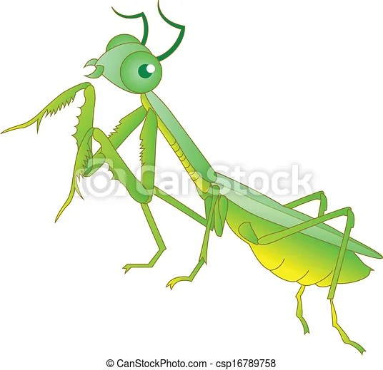 clipart vector of praying mantis