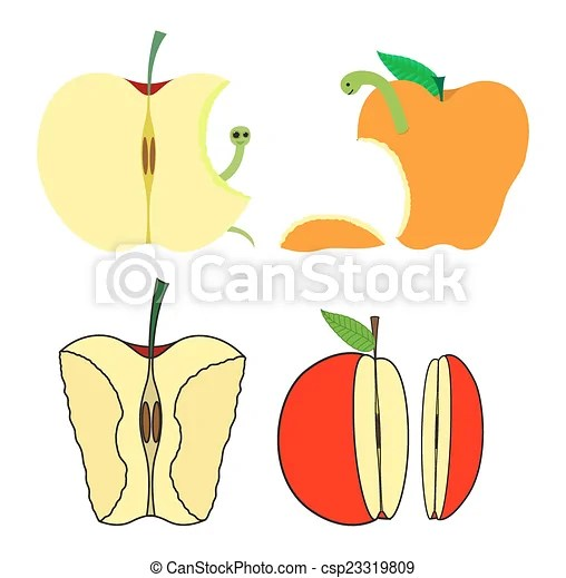 vector clipart of eaten and