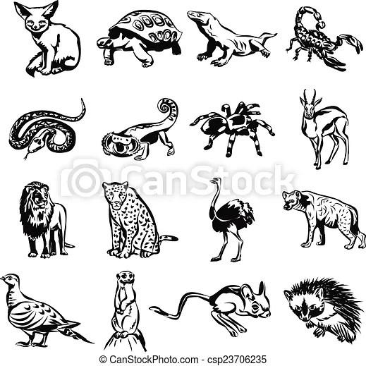 Vectors Of Desert Animals Vector Black Doodle Outline
