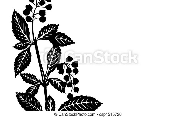 Vector of vector illustration sheet plants on white