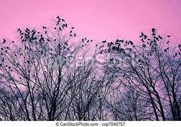 Oiseaux, et, Arbres - csp7040757