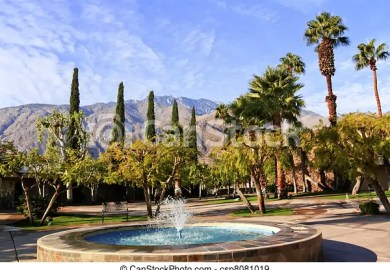 Palm Trees Illustrations And Clipart Can Stock Photo