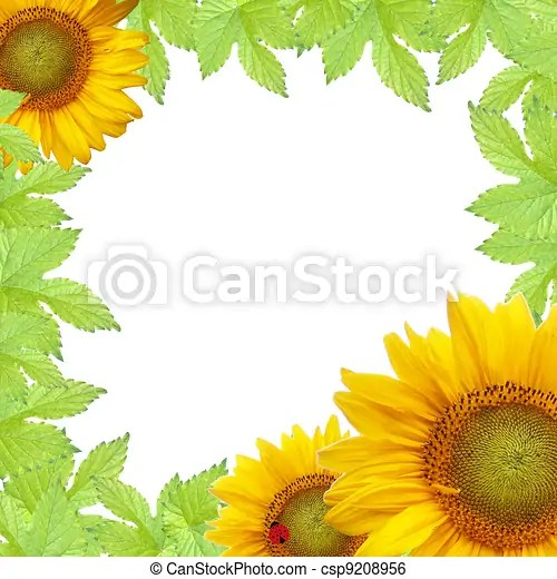 stock illustration of green leaves