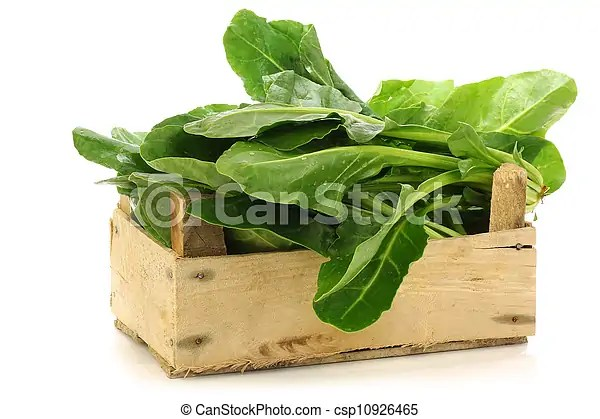 Chinese spinach (ipomoea aquatica) in a wooden crate on a white background.