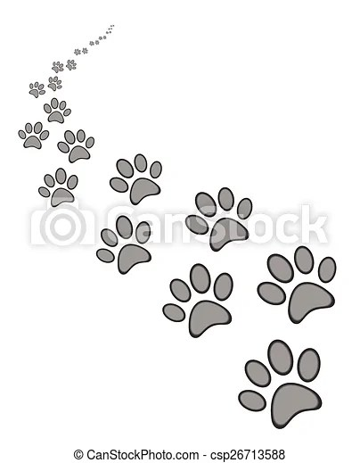 Cute Cat Paw Drawing : drawing, Print, Background,, Isolated, White, Vector, CanStock