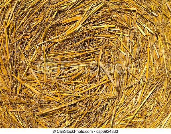 detail of a hay