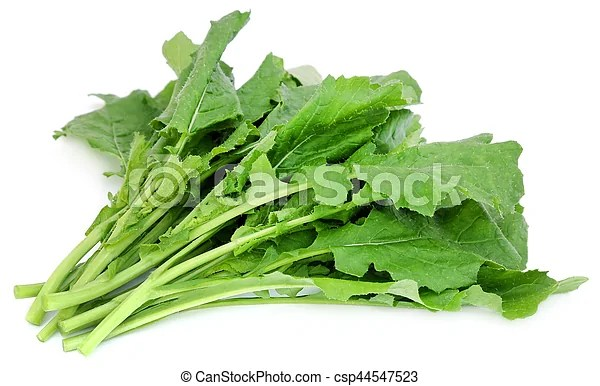 Edible mustard leaves as vegetable over white background.