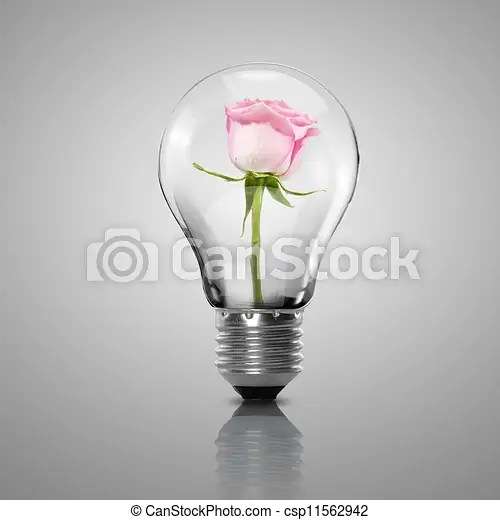 electric light bulb and